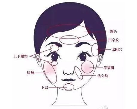 脂肪填充脸部恢复过程有哪些