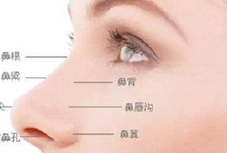 鼻综合手术多少钱